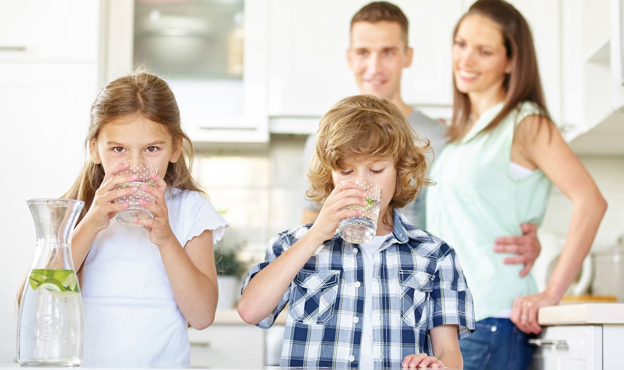 IMPORTANCE OF USING HIGH GRADE WATER FILTER SYSTEMS IN YOUR HOMES: